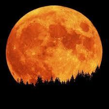 Harvest Full Moon 2012