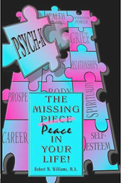 missing piece book